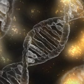 Picture of DNA